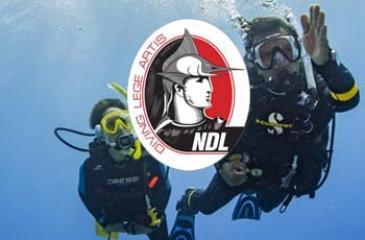 Курсы OWD 3 - 5 дней по NDL