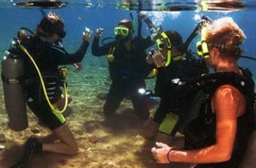 Ознакомительное Погружение (в стоимость включено подводное фото, мед страховка и трансфер)
